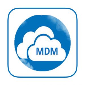 Apple MDM